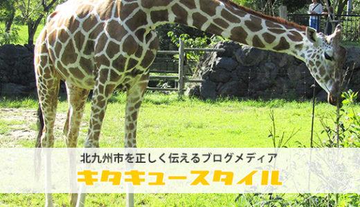 到津の森公園(いとうづのもりこうえん)の見どころと動物たちを写真入りでご紹介