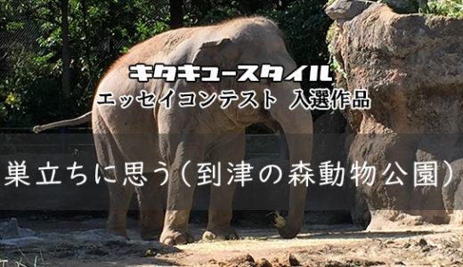 巣立ちに思う(到津の森動物公園)【エッセイコンテスト 入選作品】