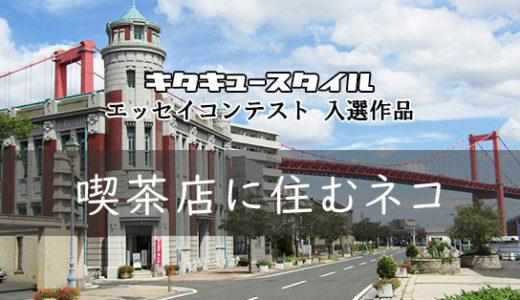 喫茶店に住むネコ【エッセイコンテスト 入選作品】