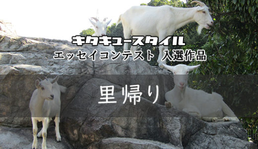 里帰り【エッセイコンテスト 入選作品】