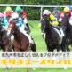 【小倉競馬場】子どもの遊び場もたくさん!グルメも充実!緑豊かな北九州市民の癒しスポット